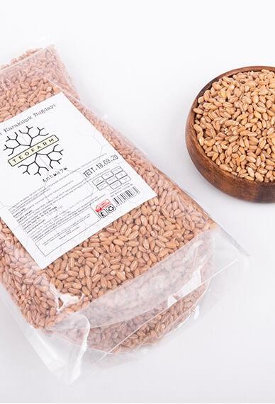 Amik Ovası Karakılçık Buğdayı (1 KG)